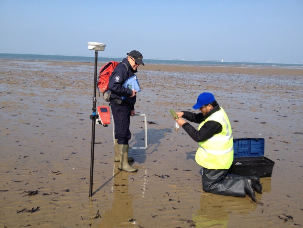 Surface Sediment Sampling